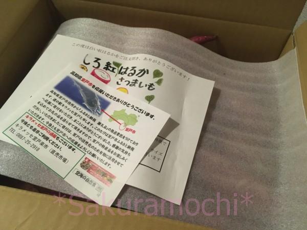 高知県室戸市ふるさと納税-白い紅はるか到着!