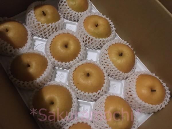 鳥取県の梨のふるさと納税の画像(花よりさくらもち)