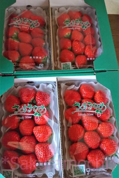 香川県三木町ふるさと納税-さぬきひめ苺4パック