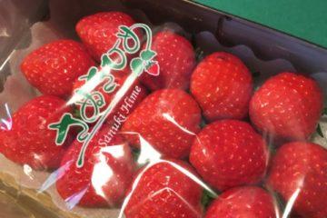 香川県三木町ふるさと納税-さぬきひめ苺アップ