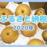 【ふるさと納税】リピート♥鳥取県湯梨浜町の新興梨10kg(10,000円)を食べきったので徹底検証♪