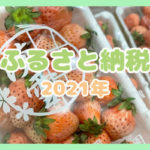 【ふるさと納税】熊本県玉名市の白いちご「淡雪」1.4kg(10,000円)が届いたので徹底検証❤